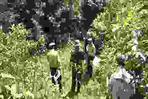 Khoanh vùng bảo vệ tại khu vực nghi xuất hiện thú rừng bắt dê