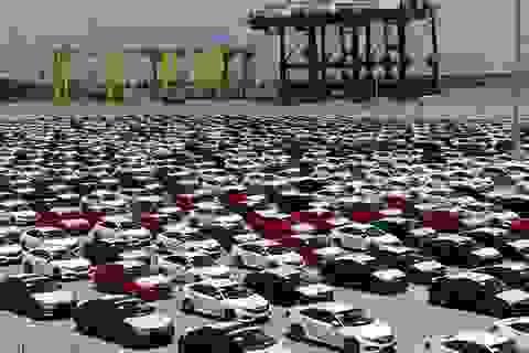 """Vượt """"rào"""", ô tô nhập khẩu liên tiếp về Việt Nam"""