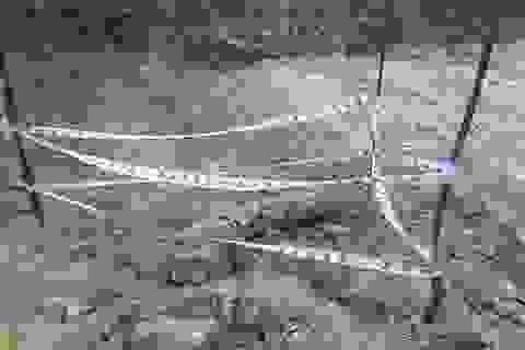 Hàn Quốc tài trợ 20 triệu USD cho dự án khắc phục hậu quả bom mìn ở Việt Nam