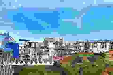 Tập đoàn Than-Khoáng sản VN: Tiêu thụ sản phẩm Alumin 2 tháng đầu năm tăng đột biến