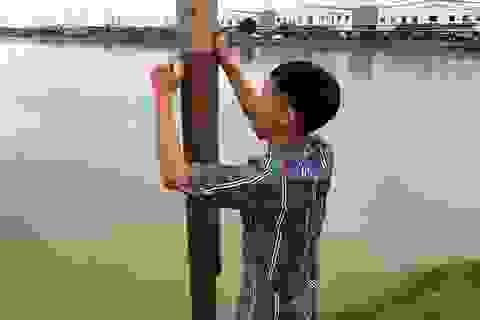 Nghệ An: Xin cải tạo hồ trồng sen, đào hết đất bán thành hồ nuôi cá!