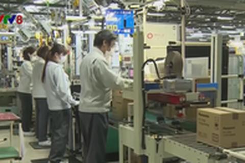 Robot thay thế nhân công phổ biến trong các nhà máy ở Nhật Bản