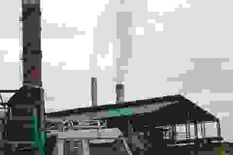 Nhà máy đường Bình Định bị niêm phong vì gây ô nhiễm môi trường