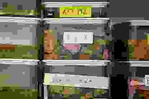 Phát hiện sớm bệnh nhờ định nghĩa mới về Alzheimer