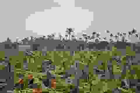 Một hiện tượng bất an ở nông thôn cần giải quyết triệt để