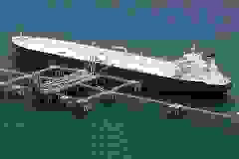 """Vụ """"lót tay"""" hải quan 12 triệu đồng để nhập lậu xăng dầu, Tổng cục Hải quan nói gì?"""