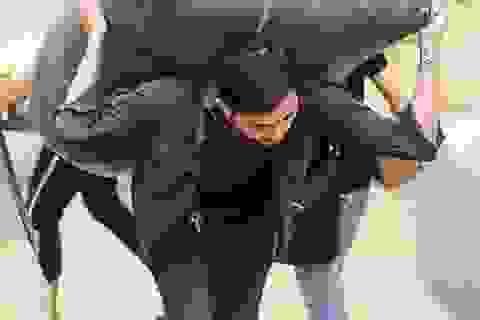 """Cực nhọc nghề """"cửu vạn"""" chợ Đồng Xuân"""