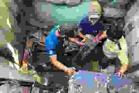 Phát hiện 2 vụ buôn lậu gỗ trắc