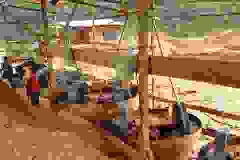 Cameroon hỗn loạn vì người Trung Quốc đổ xô tới đào vàng