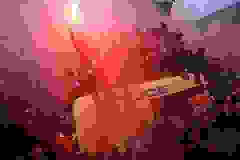 CĐV Liverpool nhảy lên xe cảnh sát, làm loạn trước trận gặp AS Roma