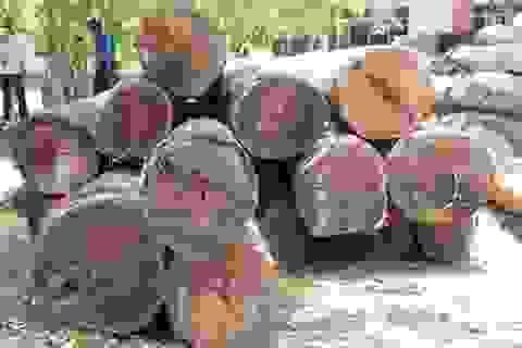 """Vụ trùm gỗ Phượng """"râu"""": Đình chỉ 4 cán bộ đồn Biên phòng Đắk Lắk"""