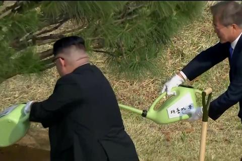 Lãnh đạo Triều Tiên trồng cây cùng Tổng thống Hàn Quốc