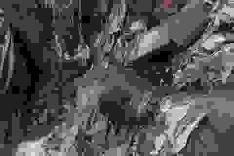 Công ty môi trường bị tố xả thải bẩn ra môi trường