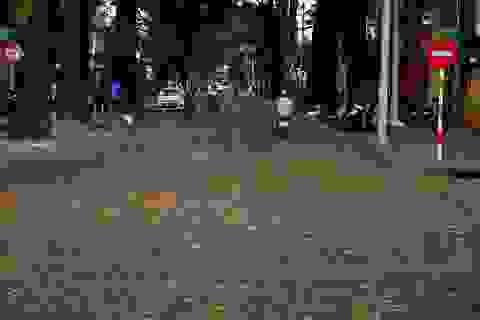 Đẹp mê mẩn hình ảnh sao đen tung bay khắp đường phố Sài Gòn