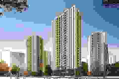 Mở bán dự án phân khúc đại chúng Mipec City View tại Hà Đông