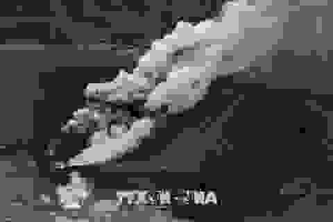 Nhật Bản: Núi lửa Shinmoe phun trào dữ dội, cột tro bụi cao tới 5.000 mét