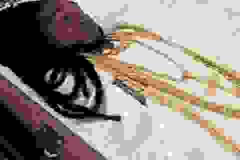 Triệu phú trẻ được an táng trong quan tài vàng, đeo trang sức 100.000 USD