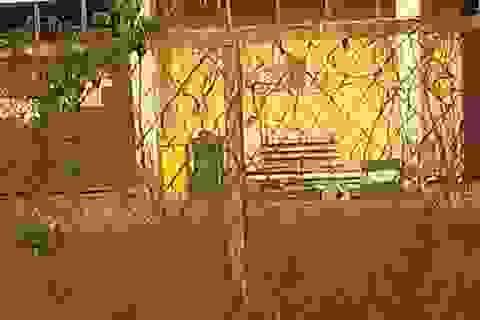 Vụ người đàn ông chết trong rừng cao su: Bắt 2 nghi phạm