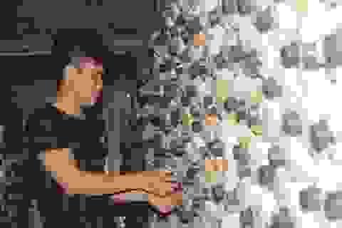 Chàng trai 9X Quảng Trị khởi nghiệp từ nấm sò