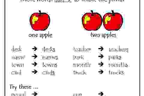 Đố bạn làm trắc nghiệm cực khó về số nhiều trong tiếng Anh