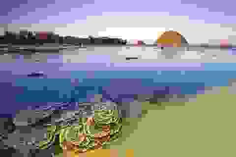 Gành đá đĩa, bãi xếp, mũi đại lãnh…ở Phú Yên đón hơn 34.000 lượt khách trong dịp nghỉ lễ