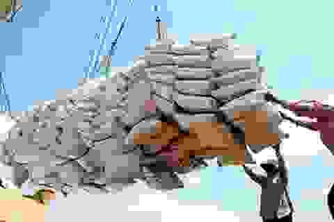 Gạo Việt chính thức có tên trên bản đồ nông sản bằng tên gọi: Vietnam Rice