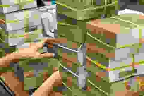 TS Ngô Trí Long: Tăng hàng loạt loại thuế, đừng chỉ nhìn thu ngân sách!