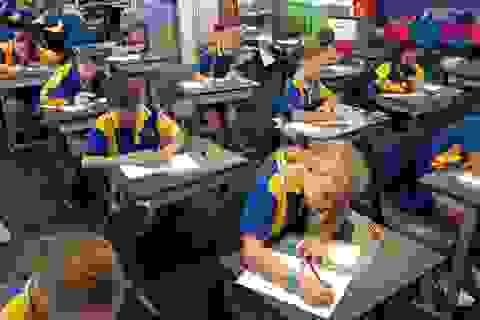 Đố bạn làm bài kiểm tra dành cho học sinh lớp 7 ở Úc