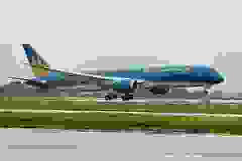 Hàng không quốc gia phục vụ đặc sản vải thiều trên máy bay