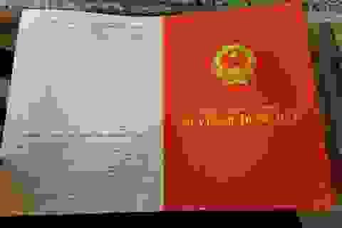 Dân tố mất đất sau hơn 10 năm cắm trích lục ở ngân hàng tại Thanh Hóa?