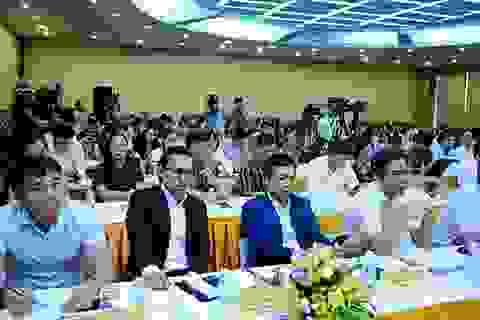 Khó tin: Sau 3 năm, miếng đất Bắc Vân Phong giá tăng gấp 100 lần