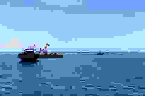 """Quyết liệt truy quét tàu giã cào """"tận diệt"""" hải sản gần bờ"""