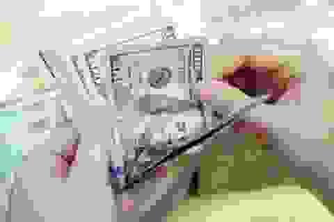Thủ tướng: Dự trữ ngoại hối tăng từ 28 tỷ USD lên 64 tỷ USD trong 2,5 năm qua