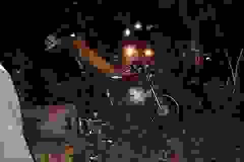 Bắt 3 thanh niên nửa đêm vào rừng đốn hạ gần 40m3 gỗ
