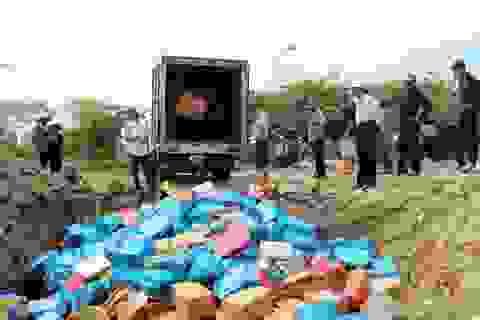 Tiêu hủy 157 mặt hàng có nguy cơ ảnh hưởng đến sức khỏe