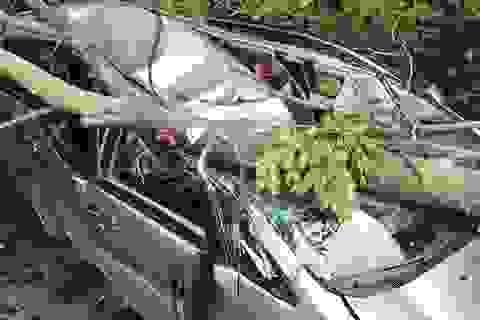 Hiện trường kinh hoàng ôtô bị cây xanh đè bẹp, tài xế mắc kẹt sau tay lái
