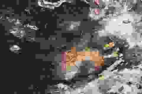 Người ngoài hành tinh từng thăm Ấn Độ cách đây 10.000 năm?