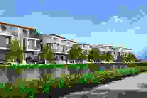 Điểm sáng trong giấc mơ Thung lũng Silicon Việt Nam