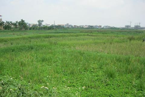 Hà Nội sắp đấu giá đất cả nghìn dự án, thu về hơn 53 nghìn tỷ đồng