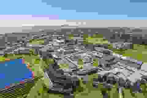Hội thảo du học Cấp 2 và 3 tại New Zealand