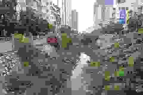 Mương nước đen đặc quánh rác thải giữa khu đô thị mới ở Hà Nội