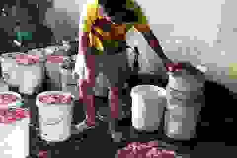 Hình ảnh kinh hoàng ở cơ sở nấu mỡ nước bẩn