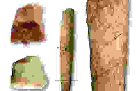 Bằng chứng sự xuất hiện của tộc người ở quần đảo Philippines 700.000 năm trước