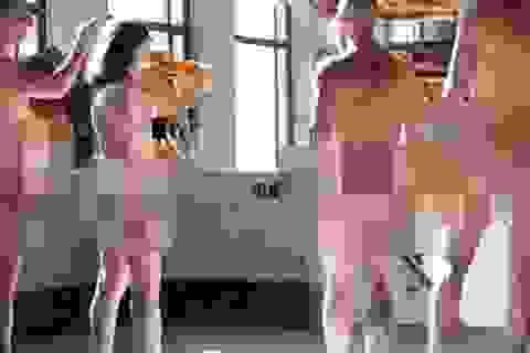 Bảo tàng Pháp lần đầu mở cửa cho người khỏa thân