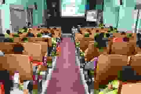Nguy hiểm về bệnh truyền nhiễm và bệnh nhiệt đới