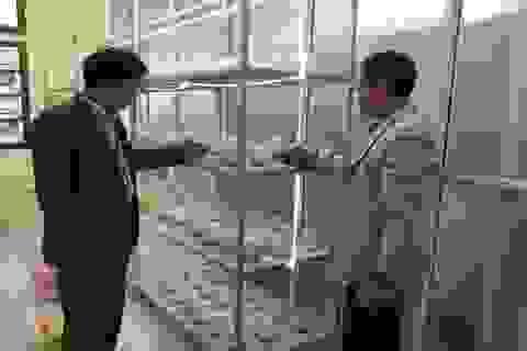 Khoa Công nghệ Môi trường - Trường Đại học Thủ đô Hà Nội đẩy mạnh nghiên cứu khoa học ứng dụng