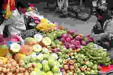 """Mỗi ngày người Việt """"móc hầu bao"""" 58 tỷ đồng ăn rau quả Trung Quốc, Thái Lan"""