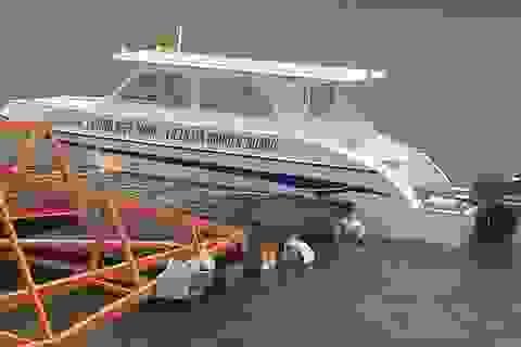 Phục hồi điều tra vụ chìm tàu ở Cần Giờ làm 9 người chết