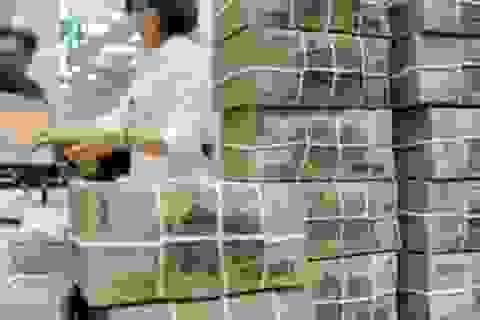 Lương sếp tại SCIC tăng - giảm theo mức lợi nhuận 2.900 tỷ đồng