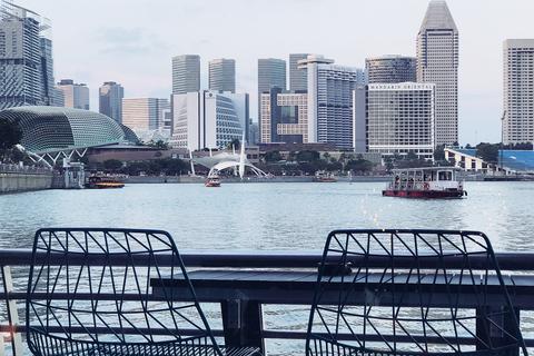 Một Singapore đầy màu sắc